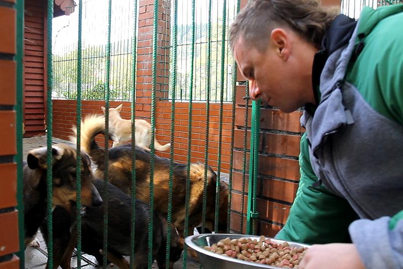 Wolontariusze Toyoty pomogli zwierzętom