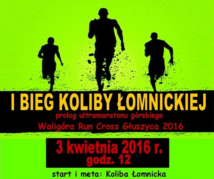 Koliba jako wstęp do WRC Głuszyca