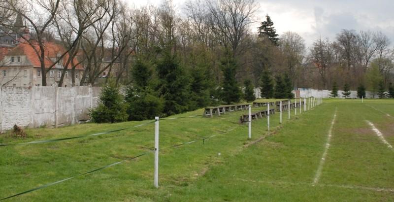 Tajemnicze odkrycie na boisku w Głuszycy