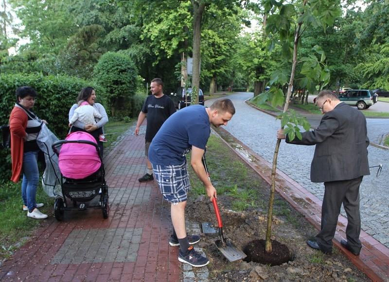 Zasadzili drzewa dla dzieci