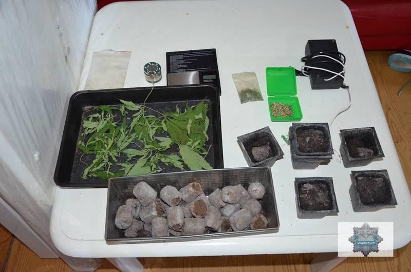 "Narkotyki i ""lipny"" tytoń"