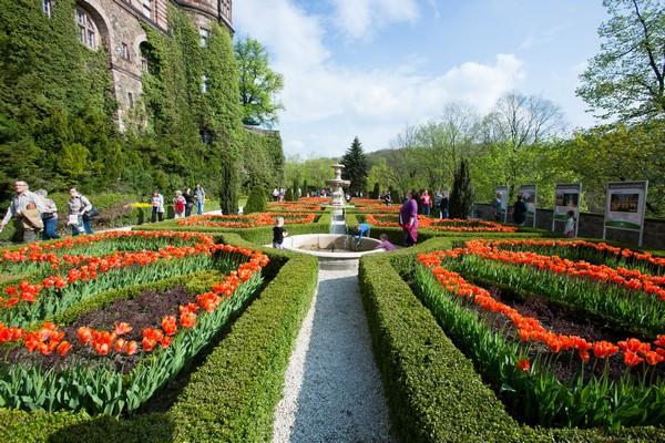 Bajkowy ogród na skale czyli tarasy w Książu