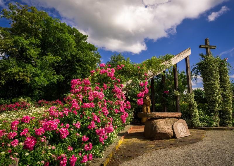Od romantycznego ogrodu po europejskiej miary Arboretum