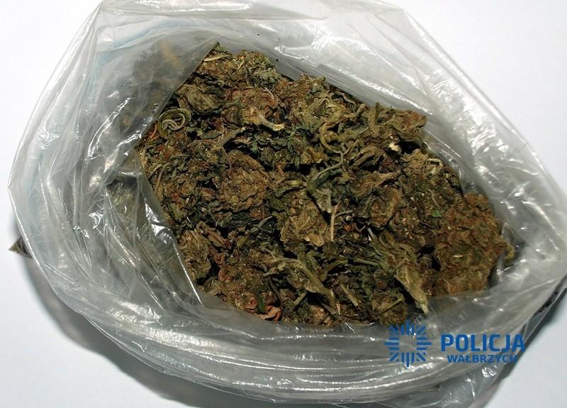 Areszt dla trojga narkotykowych dilerów