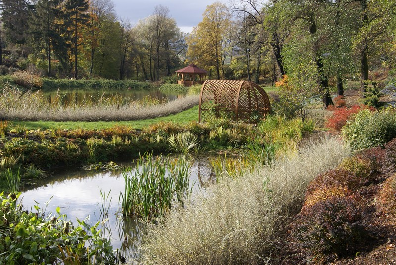 Arboretum zaprasza na Festiwal Traw i Kwiatów